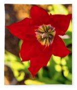 Tulip Star Fleece Blanket