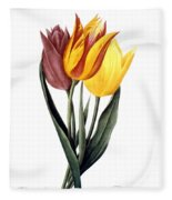 Tulip (tulipa Gesneriana) Fleece Blanket