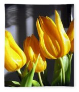 Tulipfest 2 Fleece Blanket