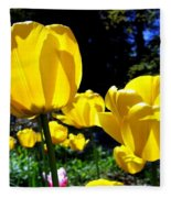 Tulipfest 5 Fleece Blanket