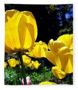 Tulipfest 5 Fleece Blanket