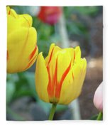 Tulips Garden Art Prints Yellow Red Tulip Flowers Baslee Troutman Fleece Blanket