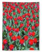 Tulips In Kristiansund, Norway Fleece Blanket
