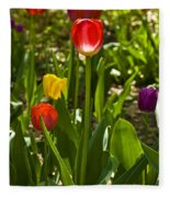 Tulips In The Garden Fleece Blanket