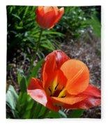 Tulips Wearing Orange Fleece Blanket