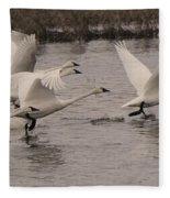 Tundra Swans Take Off Fleece Blanket