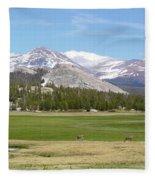 Tuolumne Meadows Fleece Blanket