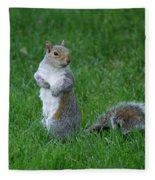 Turning Squirrel Fleece Blanket