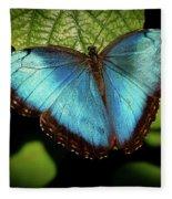 Turquoise Beauty Fleece Blanket