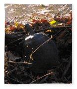 Turtle At Deer Creek Fleece Blanket