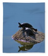 Turtles Tanning Fleece Blanket