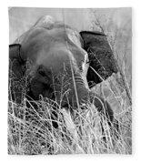 Tusker In The Grass Fleece Blanket