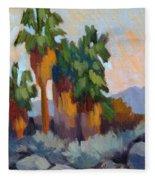 Twilight At Indian Canyons  Fleece Blanket