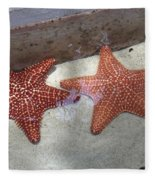 Twin Stars Fleece Blanket