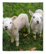 Twins - Spring Lambs Fleece Blanket