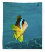 Two-banded Clownfish Fleece Blanket
