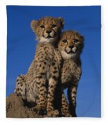 Two Cheetah Cubs Fleece Blanket