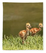 Two Chicks Fleece Blanket