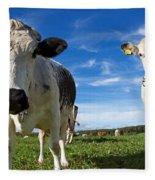 Two Cows Fleece Blanket
