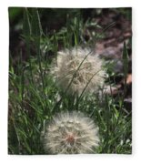 Two Dandelions, Fleece Blanket