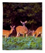 Two Doe And One Buck Fleece Blanket
