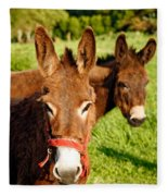 Two Donkeys Fleece Blanket