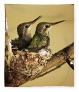 Two Hummingbird Babies In A Nest Fleece Blanket