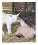 Two Little Goatlings Fleece Blanket