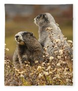 Two Marmots Fleece Blanket