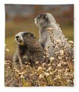 Two Marmots Fleece Blanket