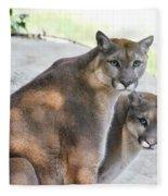 Two Mountain Lions Fleece Blanket