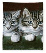 Two Tabby Kittens  Fleece Blanket