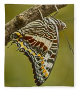 Two Tailed Pasha Butterfly Fleece Blanket