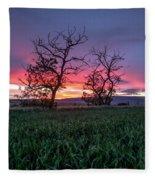 Two Trees In A Purple Sunset Fleece Blanket