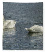 Two Trumpeter Swans At Oxbow Bend Fleece Blanket