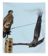 Two Views Of A Juvenile Bald Eagle Fleece Blanket