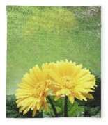 Two Yellow Gerber Daisies Fleece Blanket