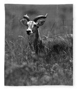 Uganda Cob Fleece Blanket