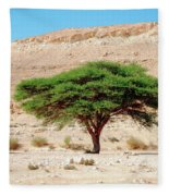 Umbrella Thorn Acacia, Negev Israel Fleece Blanket