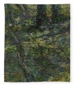 Undergrowth Saint Remy De Provence  July 1889 Vincent Van Gogh 1853  1890 Fleece Blanket