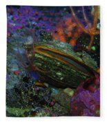 Undersea Clam Fleece Blanket