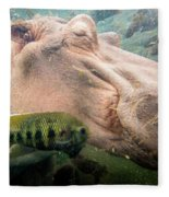 Underwater Hippo Fleece Blanket