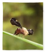 Unidenti Fly Fleece Blanket