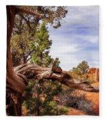 Unique Desert Beauty At Kodachrome Park In Utah Fleece Blanket
