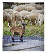 Unique Fleece Blanket
