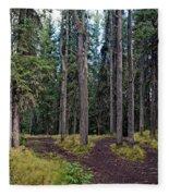 University Of Alaska Fairbanks Trail System Fleece Blanket