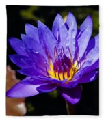 Upbeat Violet Elegance - The Beauty Of Waterlilies  Fleece Blanket