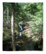Upper Adler Falls 4405 Fleece Blanket