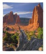 212645-upper Cathedral Valley  Fleece Blanket