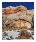 Upper Colorado River Scenic Byway Fleece Blanket
